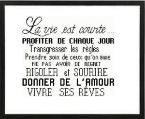 Affiche «la vie est courte»
